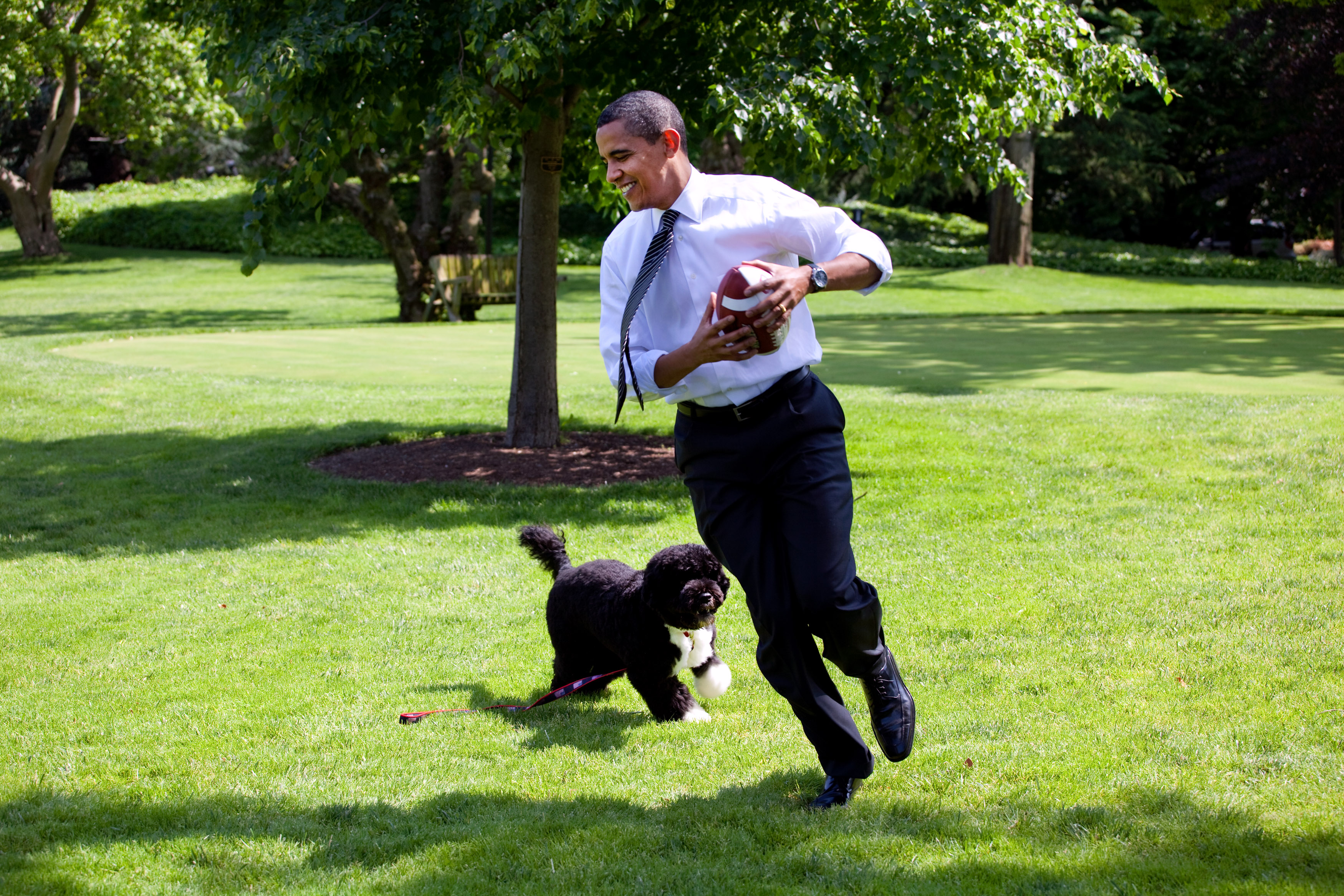 A Man Planned to Abduct President Obama's Dog Bo
