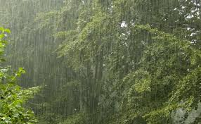 It will be raining on Wednesday and Friday