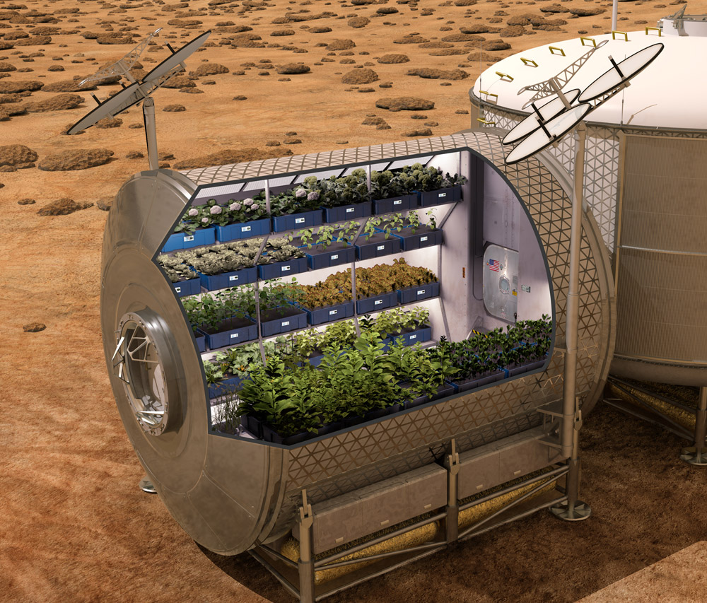 Planting in Space