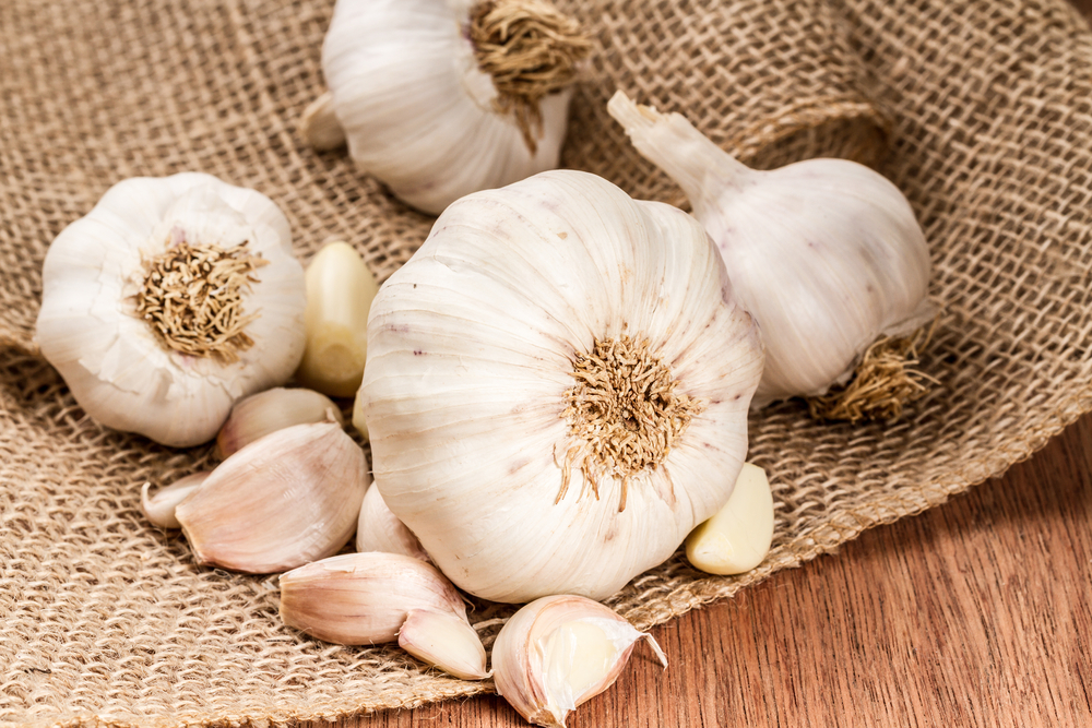 How to Benefit from Garlic