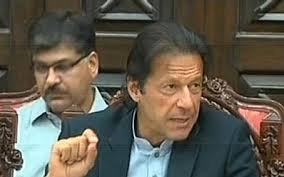 disciplinary committee set up by Chairman Imran Khan